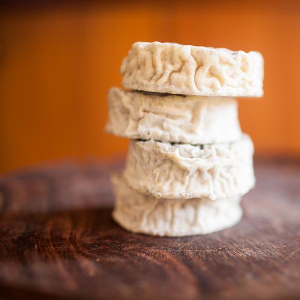Cavaniola's_10_cheeses_lindsaymorris-3061.jpg
