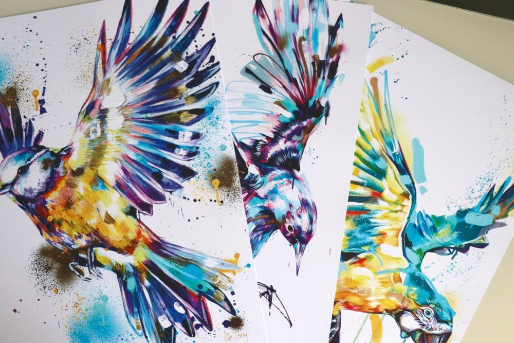 3 FOR 2 ON A3 BIRD PRINTS - Set of 3 signed A3 prints£80