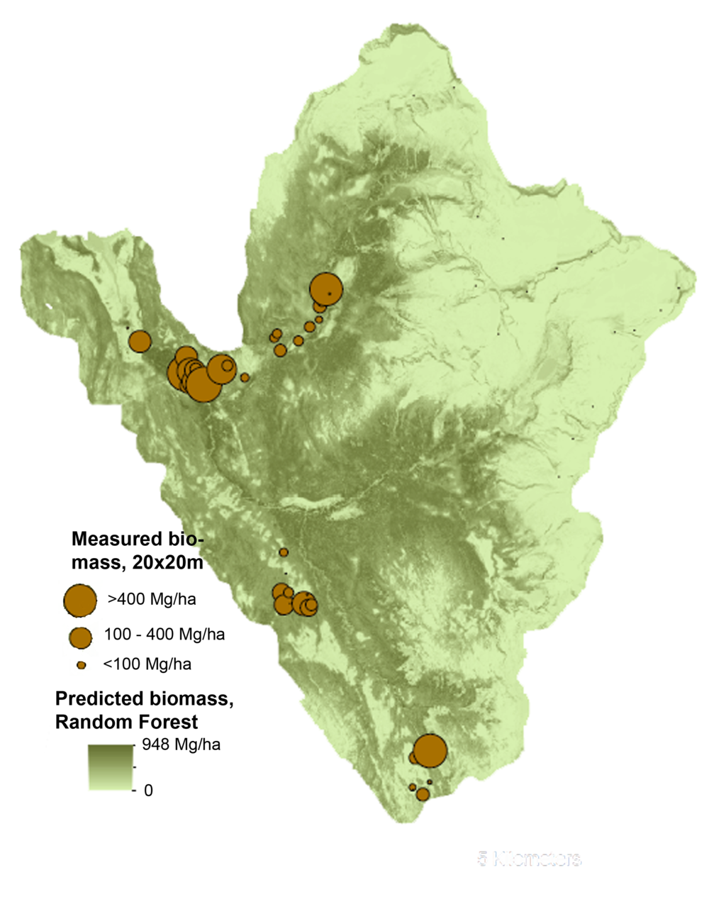 LiDAR is also useful for carbon estimation at relatively large scales.  This map (the Heen Latinee experimental forest) was completed as part of NASA funded project linking stream and forest carbon fluxes.  Buma et al. 2015.  This was done via random forests, a statistical machine learning technique commonly used to handle complex, large ecological or biological data.