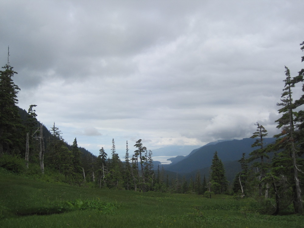 Not my best picture, but one that shows the entire forest.  The picture is from the top of Boulder Pass, at the back end of the Heen Latinee Exp. Forest (end of the south fork).  In the distance you can see Echo Cove, the bottom of the watershed.  Glaciers are to the right, in the clouds.  We modeled biomass across this entire watershed (everything that drains into the cove, three major watersheds of which this is one).   For a cool comparison to a picture from nearly this exact spot but from the early 1900's, see http://juneaunature.org/wp-content/uploads/2014/04/pondechocove.pdf.  There's also considerable historical information in that document.