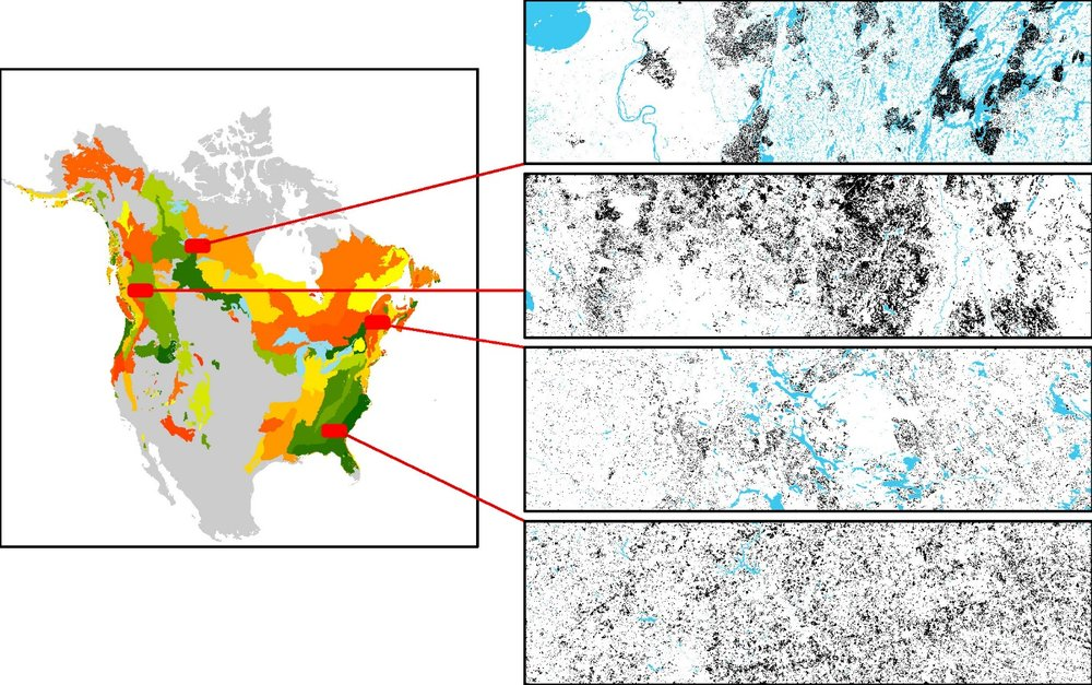 Differences in spatial pattern are apparent at multiple scales, from 30m pixel arrangements in a small area to big, landscape spanning shapes (>100 km2).  By analyzing them simultaneously, we can extract significant amounts of new information regarding ecosystem functioning.  By doing this simultaneously across the continent, a new understanding of the similarities and differences between different ecoregions emerges.  Riiters, Constanza, and Buma 2017.