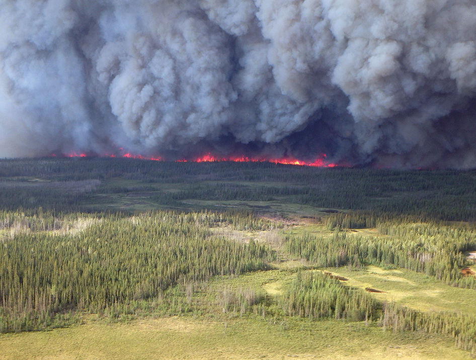 Boreal forest fire