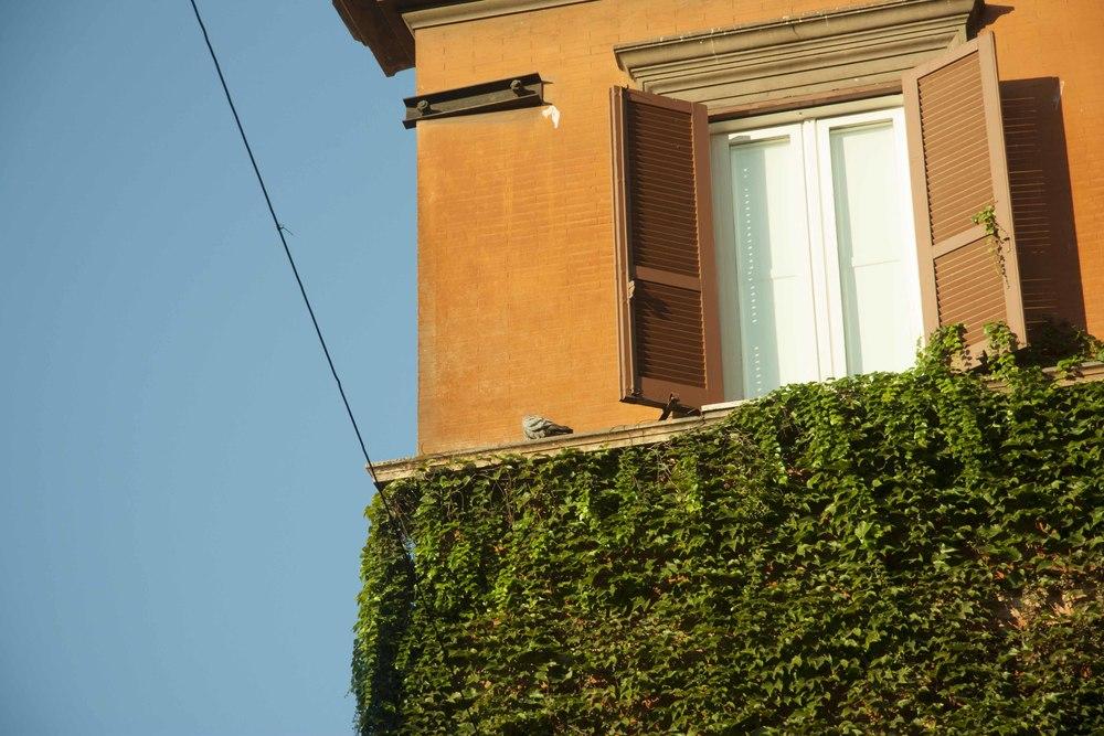 rome_portfolio_11.jpg