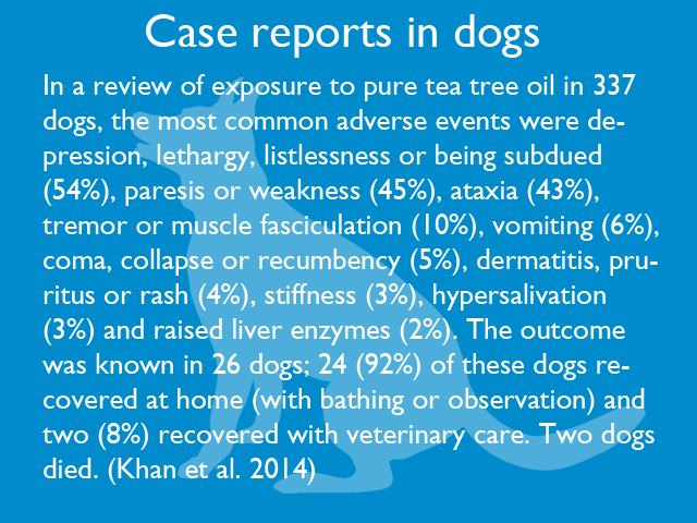 case-reports-in-dogs-01.jpg