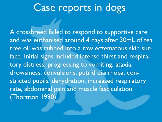 case-reports-in-dogs-03.jpg