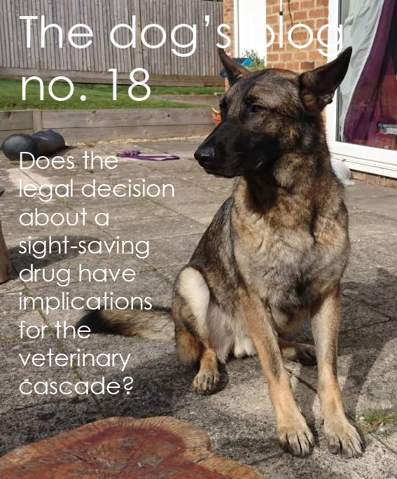 The-dogs-blog-Does-The-Legal-Decision.jpg