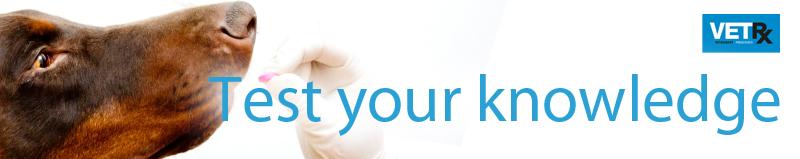 C-_Users_cloud_Dropbox_VP-artwork_Articles-2019_Paracetamol_paracetamol-test-your-knowledge.jpg