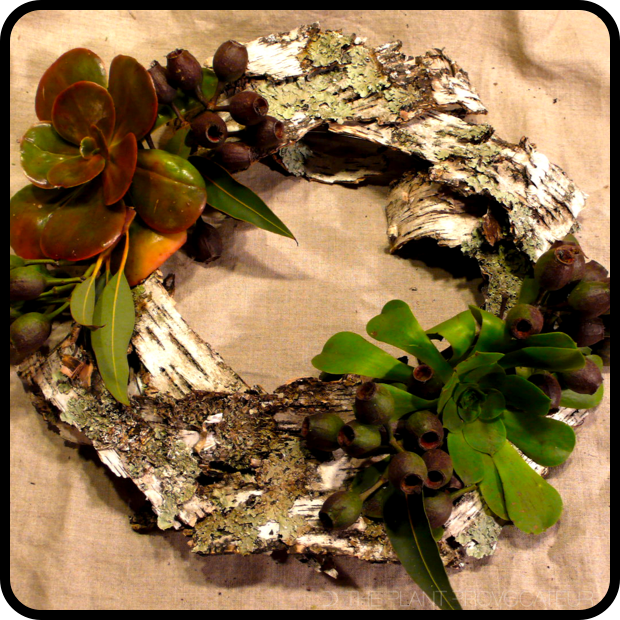 |Birch Bark Bohemian Wreath|