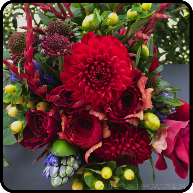 |Red Dahlia Bouquet|