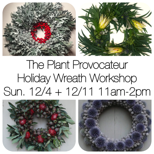 christmas wreaths tillandsia living wreaths silverlake los feliz los angeles Echo Park Atwater Village