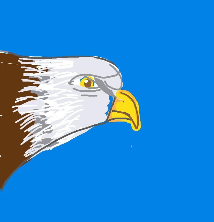 drawsome_eagle.png