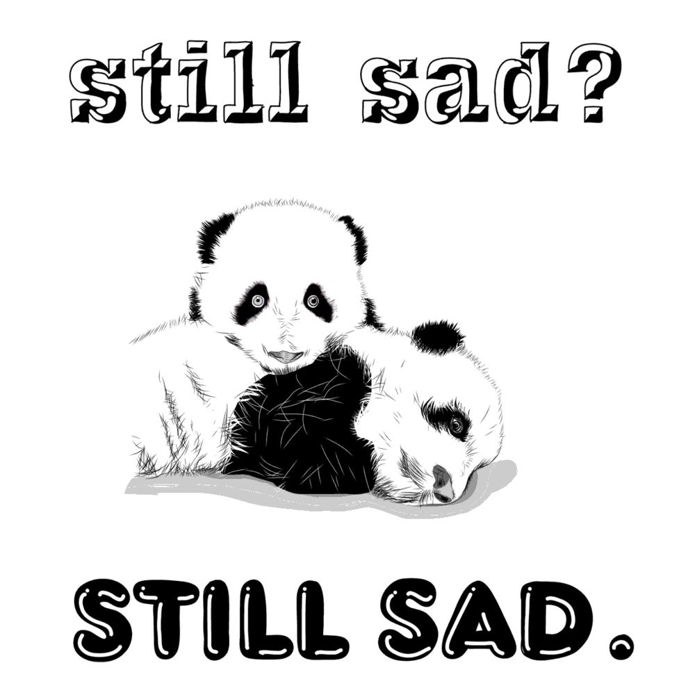 Still Sad - Photo Ark