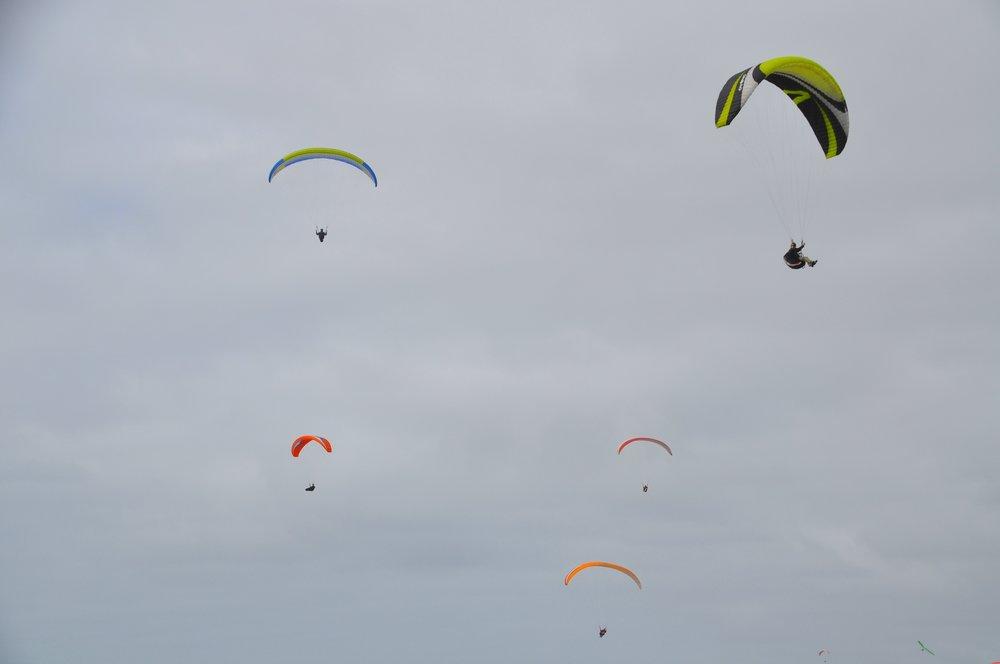 Paragliders T.JPG