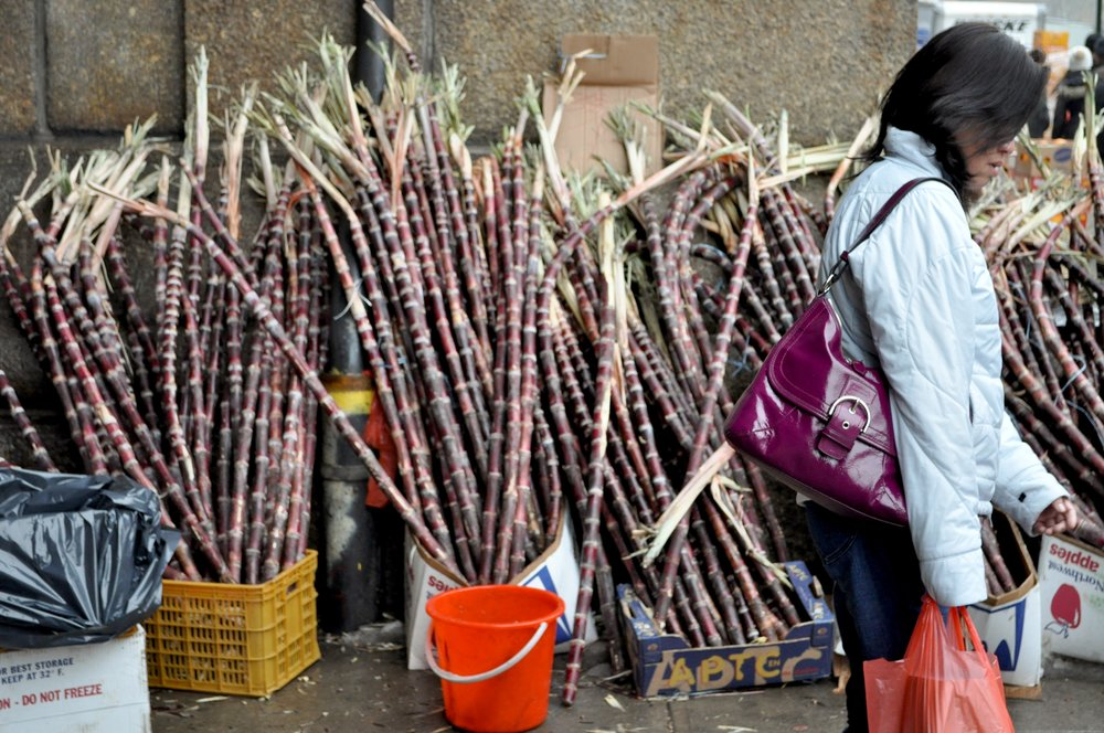 Shopping For Sugar Cane T.JPG
