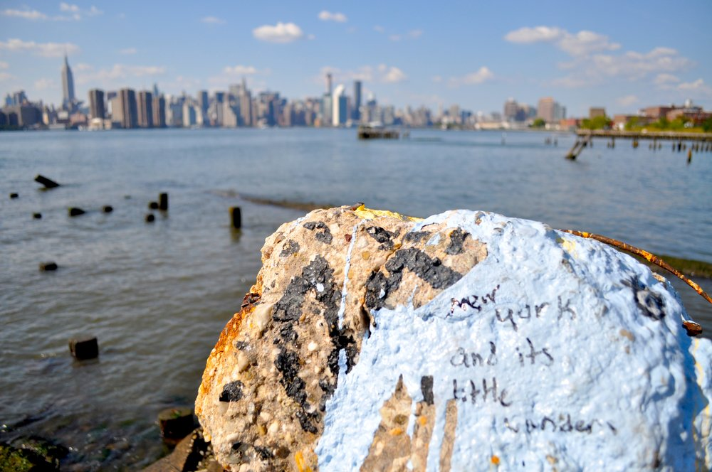 New York And Its Little Wonders T.JPG