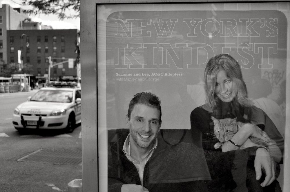 New Yorks Kindest T.JPG