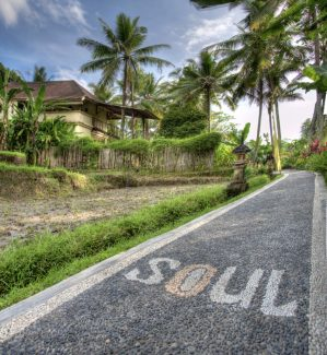 soulshine bali yoga retreat