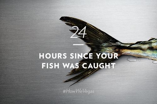 24hourfish.jpg