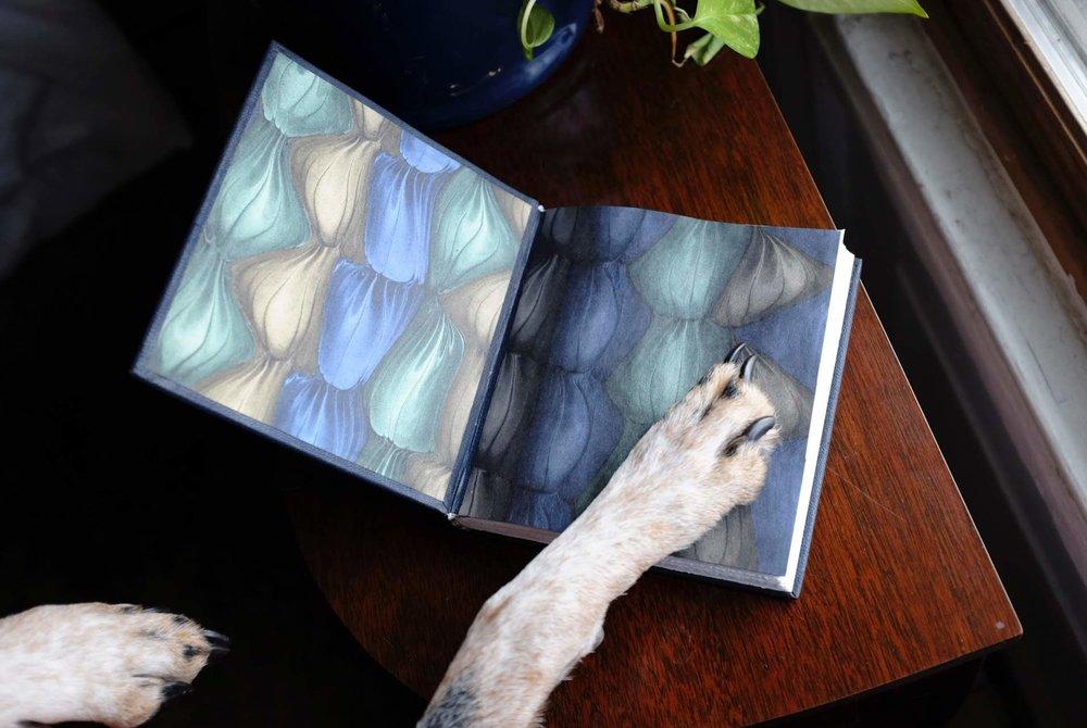 Charlie paw + Bailey book