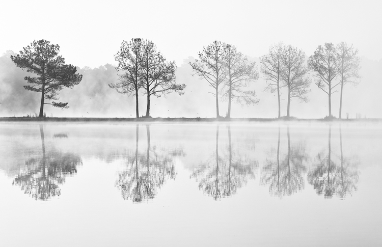 Amazing Photography by Travis Patterson, part of The Landscape Show @ the Pearl Street Gallery.