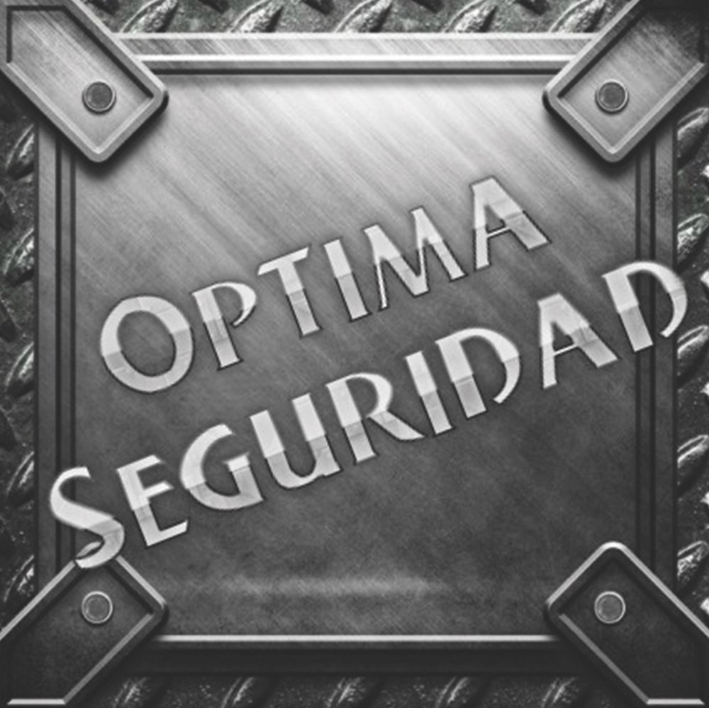 Optima seguridad .jpg
