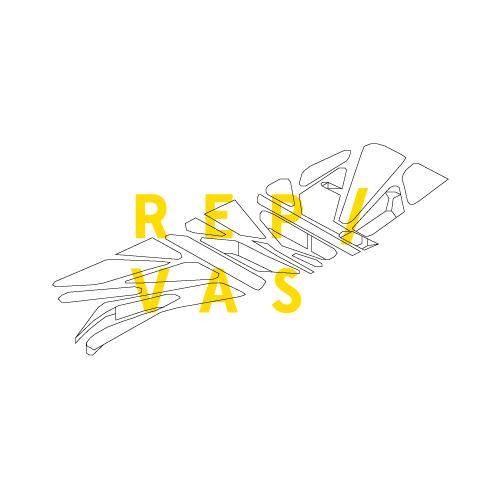 Proyectos-RepVas.jpg