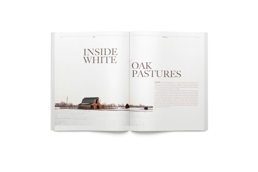 Magazine 0408-6 2014-03-15.jpeg