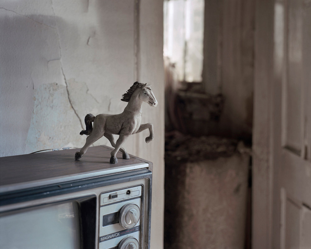 16_toy-horse.jpg