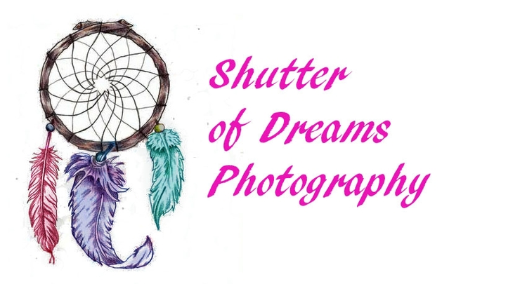 Shutter of Dreams Photography