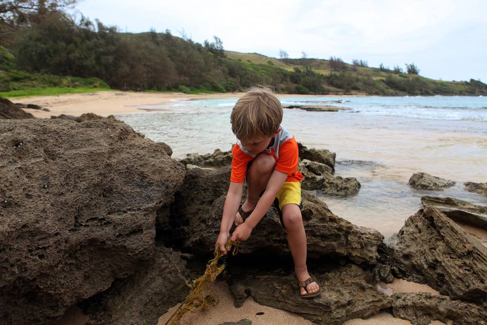 Connor Beach Cleanup hawaii10.jpg