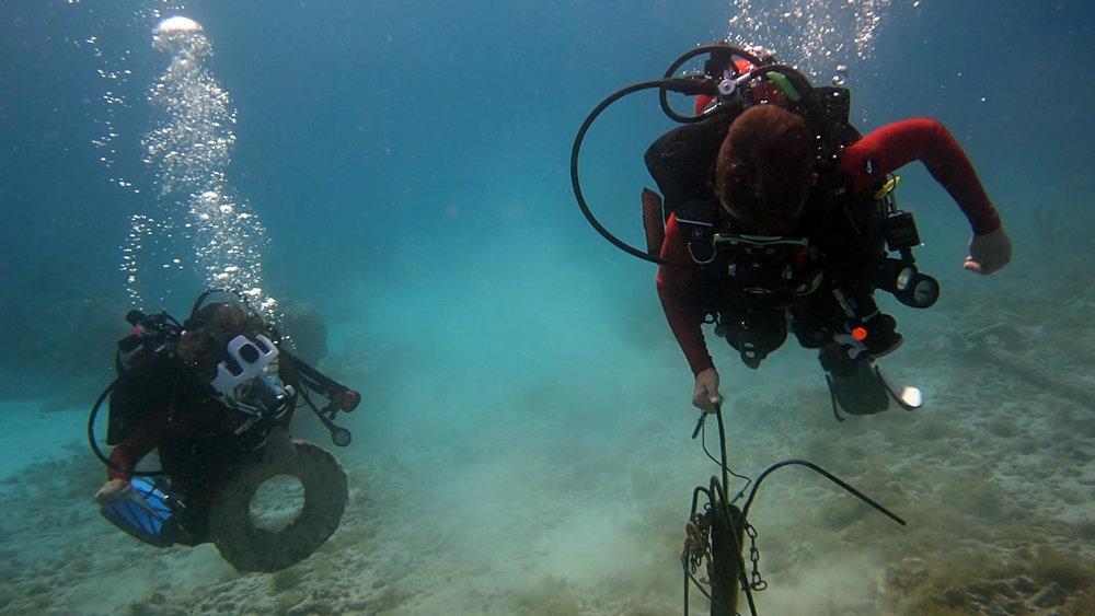 Diving - Connor and Jaden Hauld heavy trash.jpg