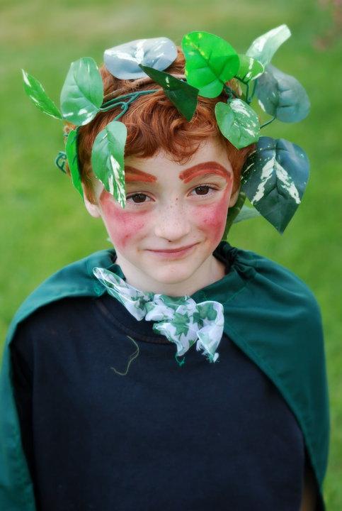 fairy MSND.jpg