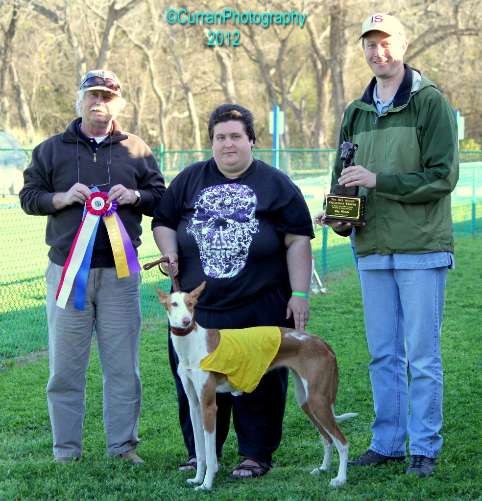 "2012 Ray Woods Challenge Perpetual Trophy Winner - Ibizan - DaVinci's Haiku for Khazad ""Haiku"" with Owner PrairieWolf Adams."