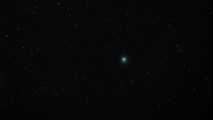 Comet Lovejoy / Photo Credit: Michael Mathews