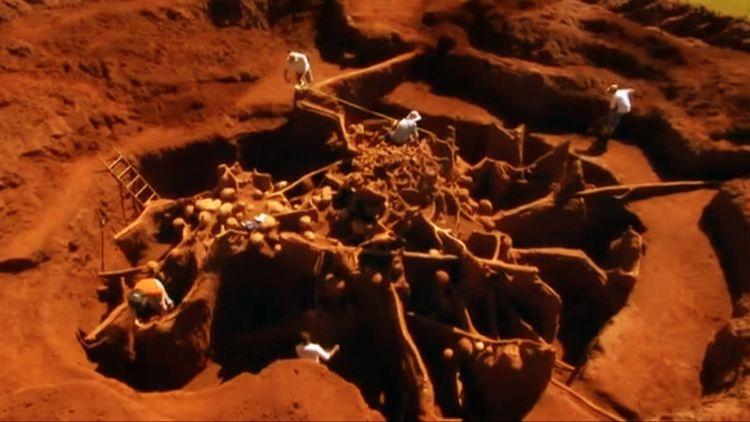 mind-bomb-003-ant-civilisation.jpg
