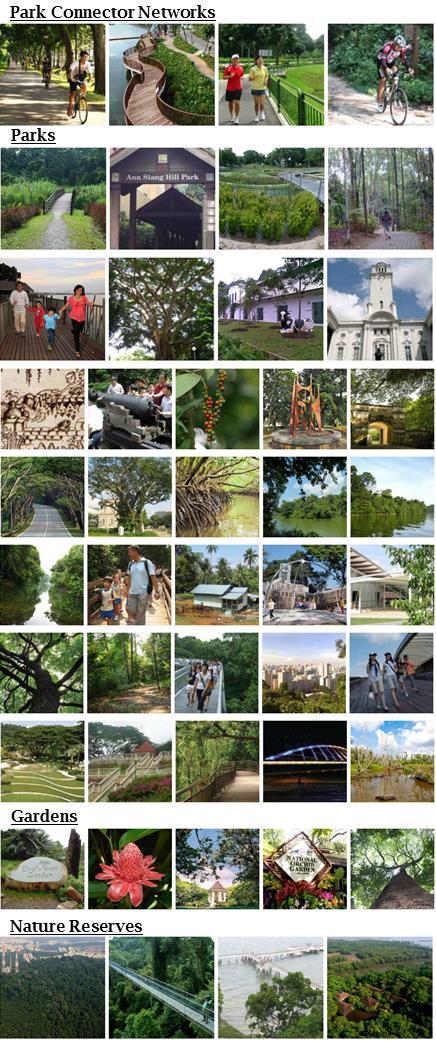 Singapore-Nature-Trails