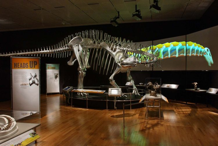 dinosaurs-dawn-to-extinction.jpg