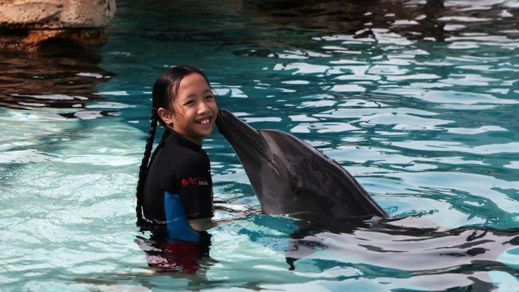 Photo Credit: Resorts World Sentosa