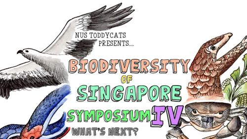 BoSS IV 2015 publicity poster.jpg