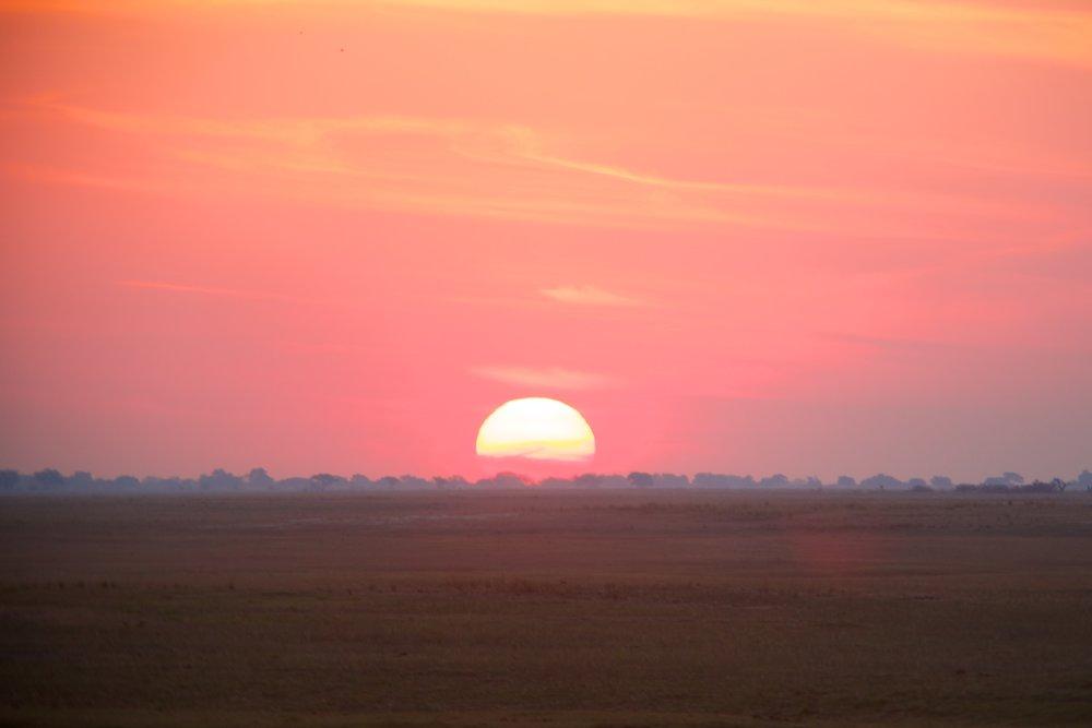 CHOBE, BOTSWANA -