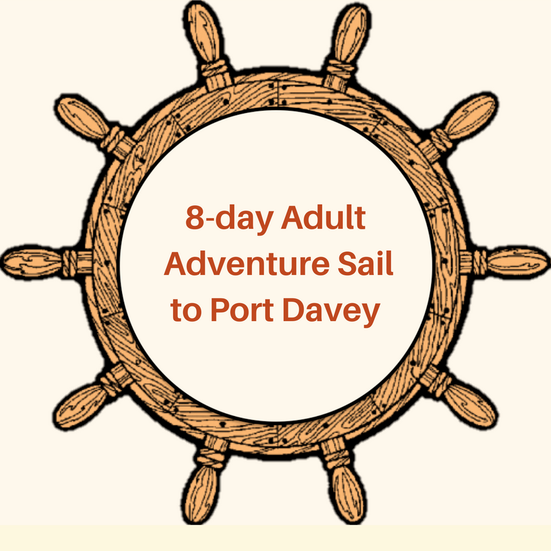 FESTIVAL DAYSAIL TICKETS (1).png