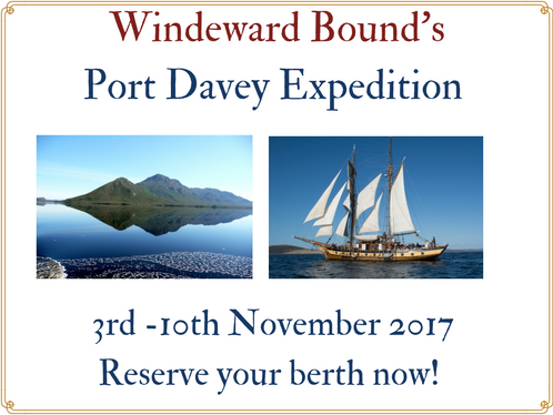 Port-Davey-cruise.png