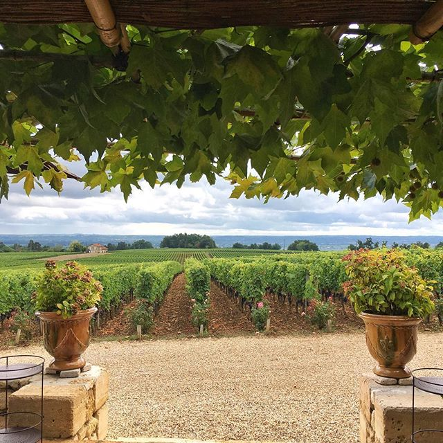 I could get used to this life 🍇🍷 . . . #Bordeaux #France #Vineyard #beautiful #sun #luxurytravel #lovelife #vacation #adventures #happy #photooftheday #instagood #instatravel #bestoftheday #travel #koyds #travelbug #blessed #travelpics #tourist #thegoodlife #fun #wanderlust #paradise #IamATraveler #amazingplaces #Summer