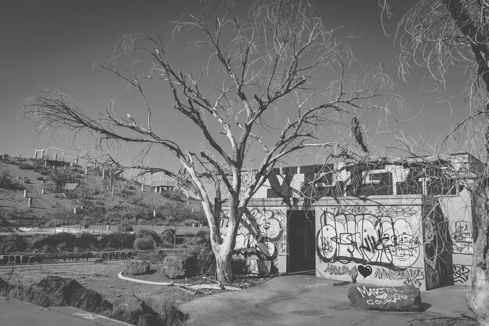 Dead Water Park (web)-22.jpg