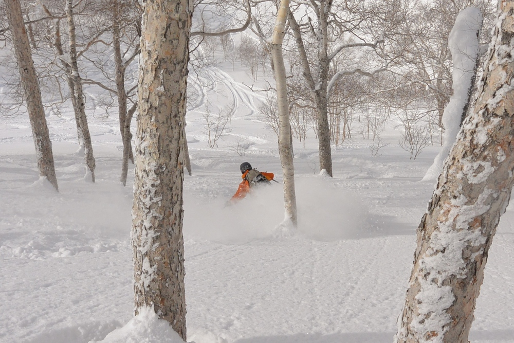 Fresh tracks after lunch on a bluebird powder day? Check. © The Powder Project Pty Ltd