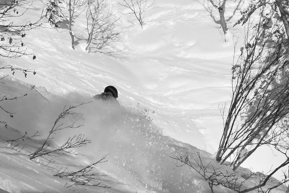 Fresh pow three days after a storm. © The Powder Project Pty Ltd