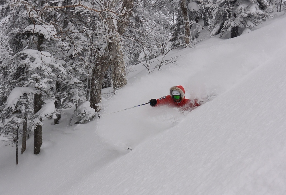 Good skiing down low. © The Powder Project Pty Ltd