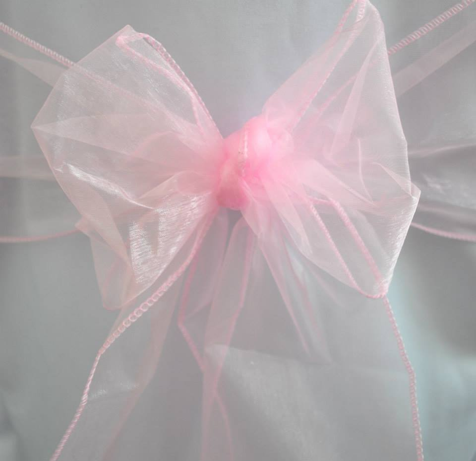 Light Pink Organza