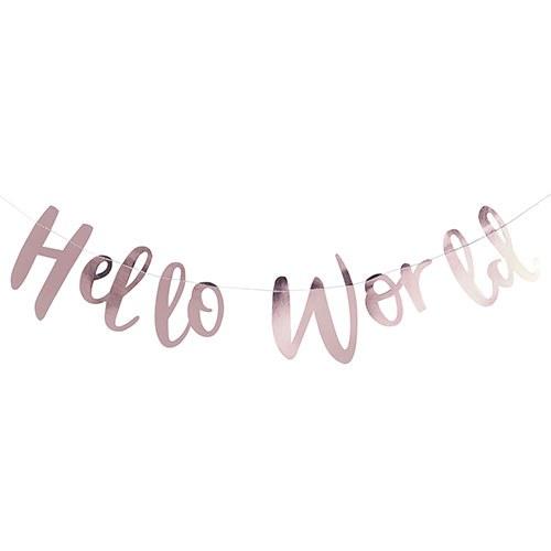 Hello World  Baby Shower Banner