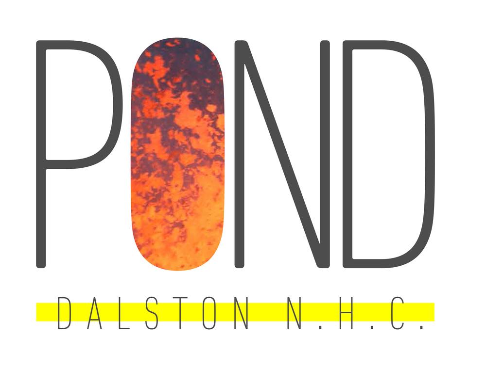 POND-DALSTON-V3.jpg